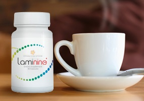 ламинин-laminine-при-климаксе