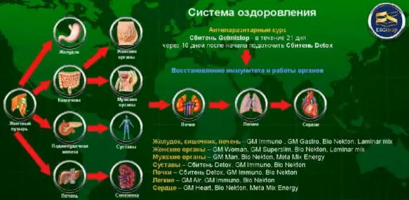 схема заболеваний органов