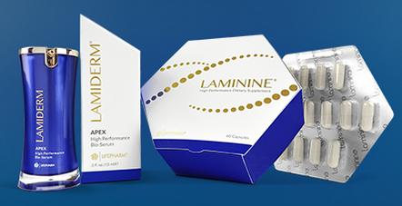 сыворотка-ламидерм-ламинин