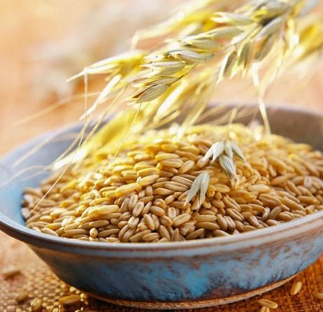 пищевые-источники-аспарагина