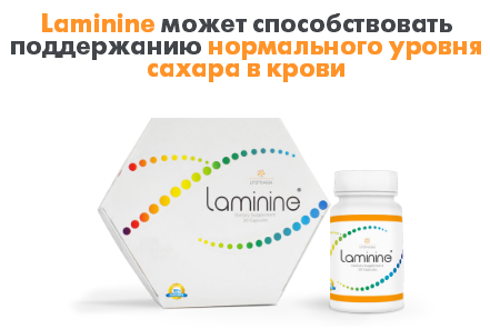 ламинин регулирует сахар крови