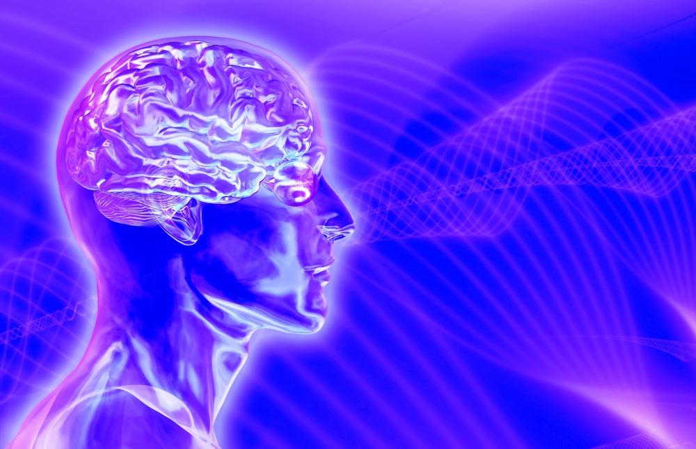 ФРФ и мозг