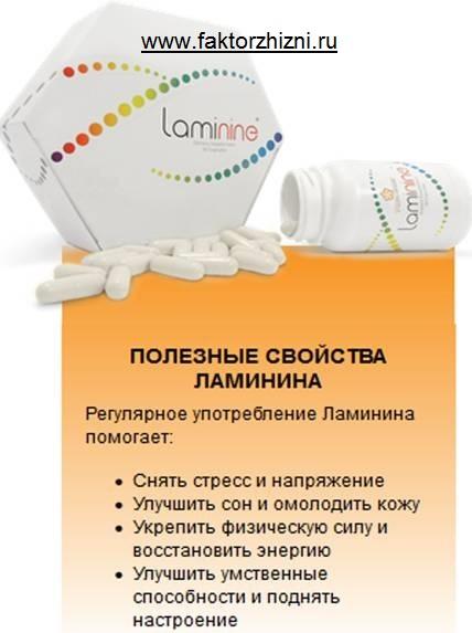 полезные свойства ламинина