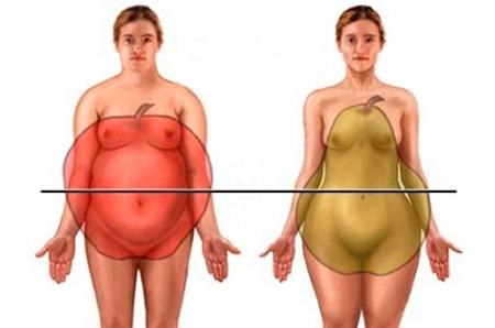 ожирение у женщин, у мужчин, обмен веществ в организме