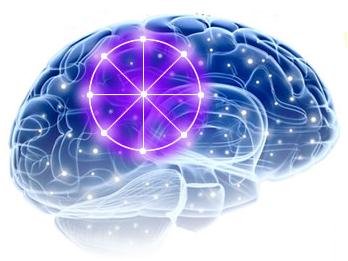 нейронные связи в мозге богатого человека человека