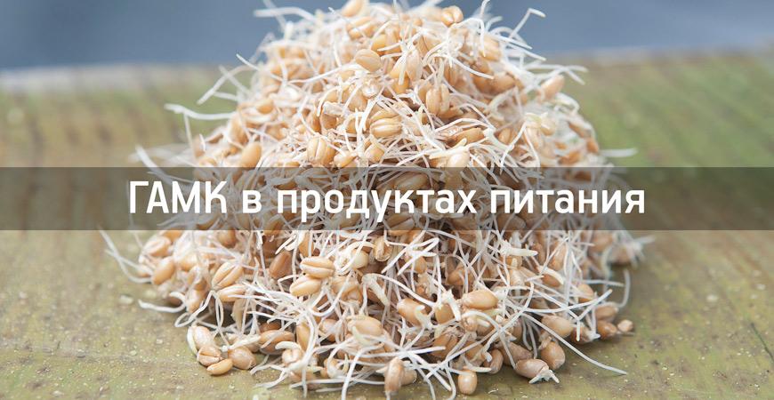 пищевые-источники-GABA