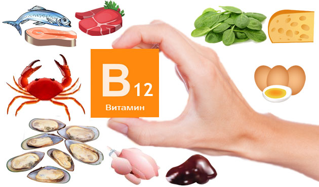 пищевые-источники-витамина-В12-кобаламина
