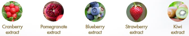 фруктово-ягодный-комплекс