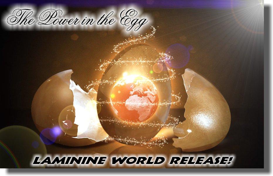 ламинин 9-ти дневный зародыш яйцо