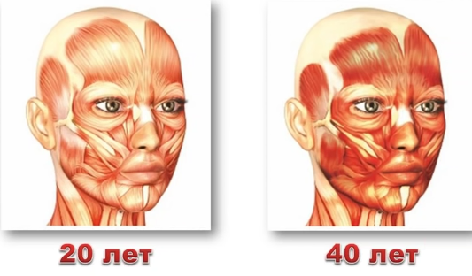 спазмирование-мышц-с-возрастом