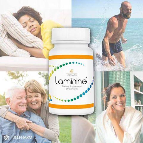 все о продукте Laminine (Ламинин)