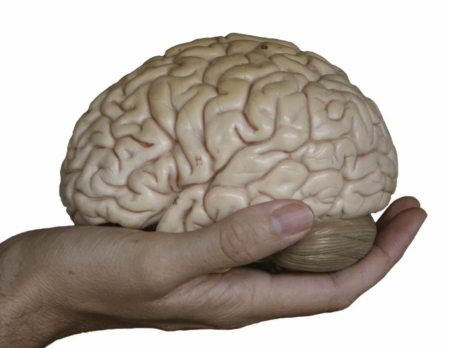 глицин-для-мозга