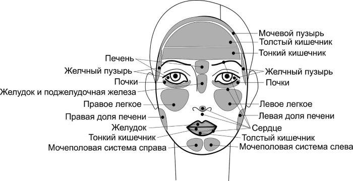 морщины-на-лице-и-болезни-органов