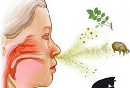 Забудь об аллергии! Начни жизнь без ограничений!