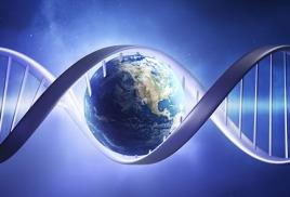 Протеины – главные носители жизни