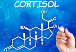 Возможна ли смерть от кортизола?