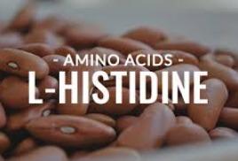 Аминокислота Гистидин: Положительные эффекты и вред