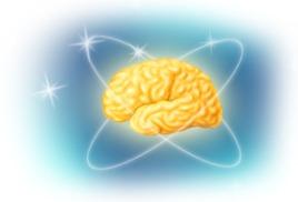 Мозг определяет жизнь или смерть