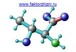 Аминокислота Треонин. Польза и вред