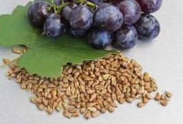 Виноградная косточка – концентрат пользы