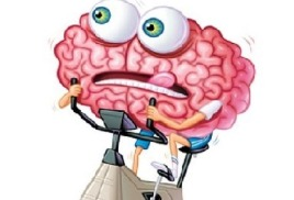 Каким мозгом мы думаем?