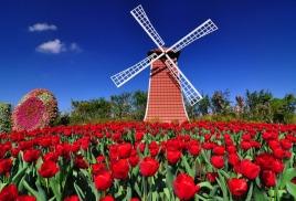 В Нидерландах оценили Laminine (Ламинин)
