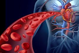 Дефицит Витамина К2 – угроза для сердца!