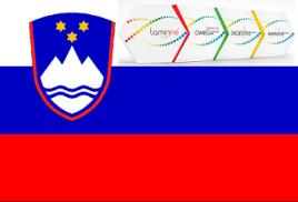 Популярность ламинина в Словении