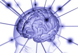 Как сохранить и приумножить память?