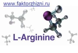 Аминокислота аргинин – источник красоты, силы и долголетия