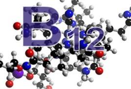 Склероз или авитаминоз: о пользе витамина В12