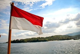Любимый всеми laminine в Индонезии